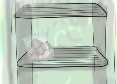 Использование холодильника для сбережения луковиц.