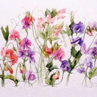 Яркий букет удивительных цветов-бабочек.