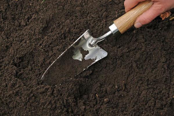 Разрыхление почвы.