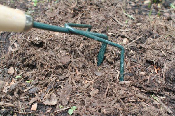 Обработка почвы.