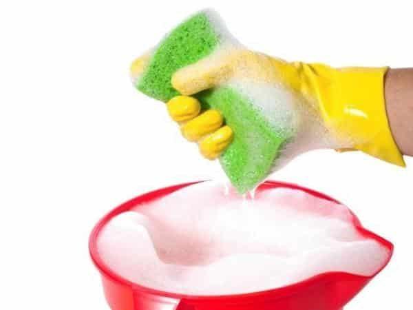 Для борьбы с вредителями можно использовать обычный мыльный раствор или специальные препараты