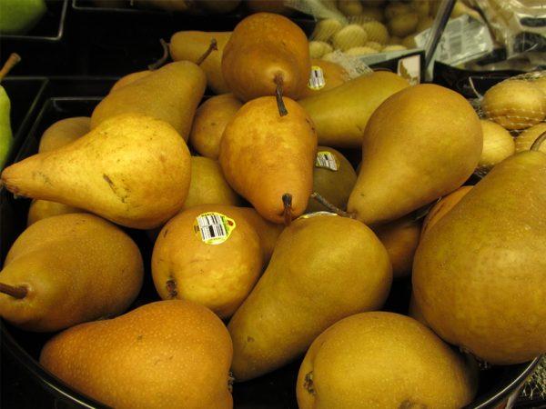 На иллюстрации изображены спелые плоды груши обыкновенной