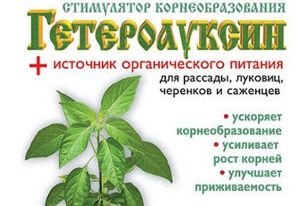Препарат для рассады, луковиц, саженцев и черенков