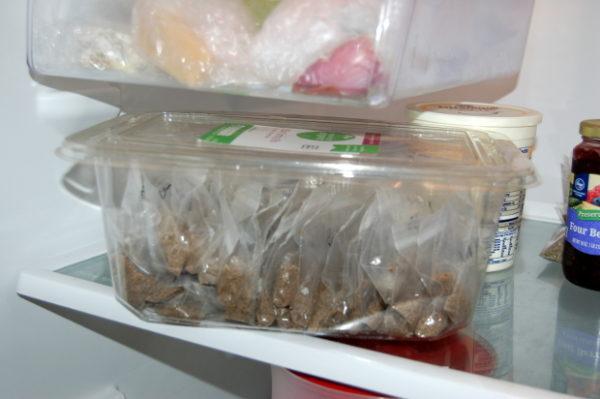 Посадочный материал в холодильнике.