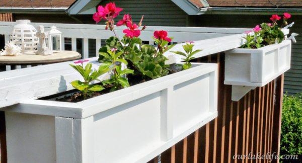Цветы в белом балконном ящике.