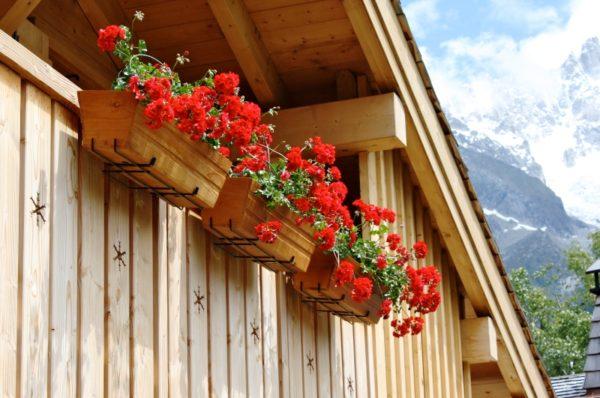 Цветущая герань в балконных ящиках, закрепленных на ограждении балкона.
