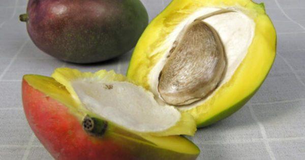 Вскрывать плод нужно осторожно.